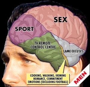 Самая сексуальная часть мужчины мозг