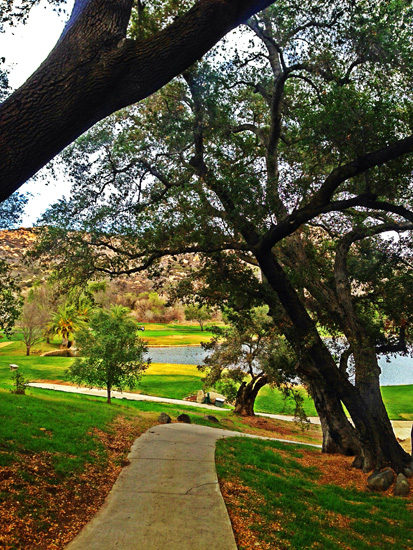 california-nature.jpg