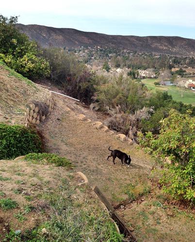 ramona-california.jpg