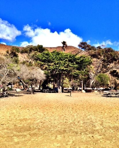 malibu-beach.jpg